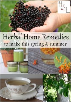 Make these herbal home remedies this spring and summer and be ready for whatever illness or malady comes your way throughout the year. homespunseasonall...