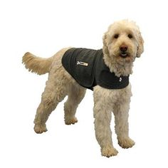 Thundershirt Heather Gray Dog Anxiety Solution - Dog Separation Anxiety Wrap from petco.com