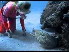I Thought This Eel Was Going To Kill Her, But What Happened Is Beyond Words! | PetFlow Blog - The most interesting news for pet parents around the world.