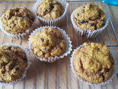 Suzanne's Kitchen : Pumpkin chocolate chip muffins Simply Filling  1sp...use fresh cranberries and all SF