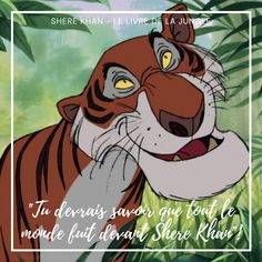 Coucou les collectionneurs Disney, aujourd'hui je vous propose de découvrir une nouvelle citation d'un méchant Disney avec Shere Khan, le méchant du livre de la jungle. #quotes #quotesdisney #disneyquotes #citations #citationsdisney #disneycitations #disney #lelivredelajungle #thejunglebook #sherekhan