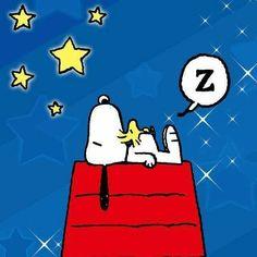 As noites mais escuras, produzem as estrelas mais brilhantes. Boa noite!!  #goodnight #sleep #sweetdreams #snoopy #woodstock #peanuts
