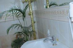 Łazienka z palmą daktylową wyhodowaną z nasionka z Tunezji.