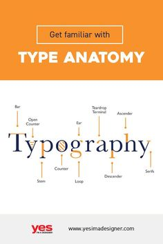 Typography is a pretty vast subject. Understanding the anatomy of typography and. - Typography is a pretty vast subject. Understanding the anatomy of typography and the way letterforms - Graphic Design Lessons, Japanese Graphic Design, Graphic Design Tutorials, Graphic Design Posters, Anatomy Of Typography, Typography Fonts, Lettering, Web Design, Game Design