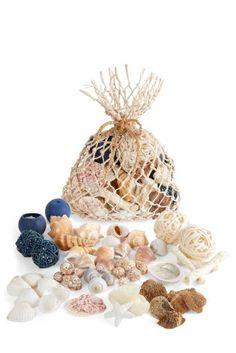 Buy Ocean Mist And Sea Salt Fragranced Pot Pourri from the Next UK online shop