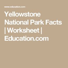 Learn about bison, some of biggest creatures in Yellowstone National ...