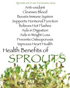 Sprout Benefits. I put alfalfa sprouts on all my wraps and sandwiches!!!