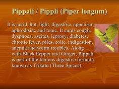 Pippali / Pippli (Piper longum) <ul><li>It is acrid, hot, light, digestive, appetiser, aphrodisiac and tonic. It cures cou...