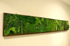 living tree framed art...Interesting, what would a beach/ocean theme look like???
