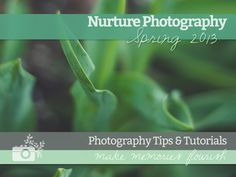 Free spring photography tutorials eBook