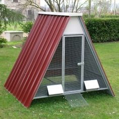 Raised Chicken Coop
