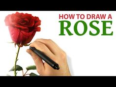 Corel Painter Tutorial - How To Draw A ROSE [Draw This #40]