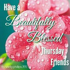 Have A Beautifully Blessed Thursday Friends
