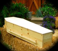 Natural wood caskets handcrafted by Vashon Island Coffin Company. Carpentry Projects, Wood Projects, Vashon Island, Got Wood, Gothic House, Wood Slab, Diy Halloween Decorations, Casket, Building Plans