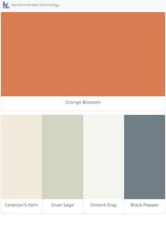Orange Blossom Collector S Item Silver Sage Distant Gray Black Pepper Green House Exterior Sage Color Palette Sage Green House