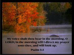 Psalm 5:3 KJV Bible verse