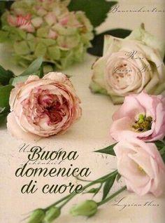 25 Fantastiche Immagini Su Buona Domenica Good Morning Bonjour E