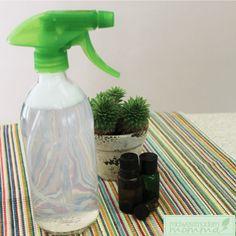 Mold and Mildew Spray
