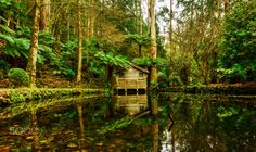 Where the earth meets the sky!  Pond House. | by kwalmsley2001 | http://ift.tt/2aieNEH