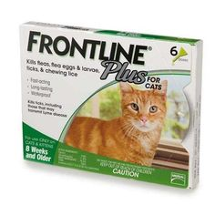 Merial Frontline Plus for Cats  12Pack *** To view further for this item, visit the image link.(This is an Amazon affiliate link and I receive a commission for the sales)