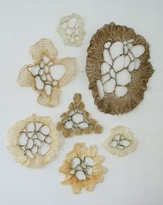 Fiona Stoltze studies in manipulating doilies using thread and wax, referencing natural patterns found in coral reefs Form Crochet, Crochet Art, Textile Fiber Art, Textile Artists, Motifs Organiques, A Level Textiles, Art Du Fil, Creation Art, Textiles Techniques