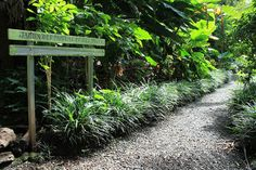 La Réunion : le Sud Sauvage ... Magnifique ! - Les Gommettes de Melo