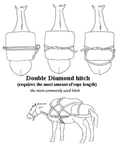 25 best horse packing tips and tricks images saddles horse gear Cm Horse Trailers double diamond hitch