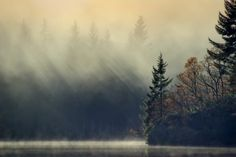 Photograph Loch Ard,Mist and sun... by David Mould on 500px