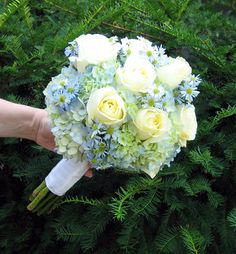 light blue hydrangeas w/white roses... can you guess my color scheme yet? ha