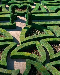 Love gardens labyrinthine
