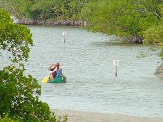 Naples Florida Pictures | Beachscapes - Clam Pass Beach Park