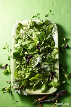 Grow herbs. Cook with herbs. Make kitchen tools with herbs.