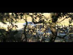 Focus on Phantom Series II at Ascari (+playlist)