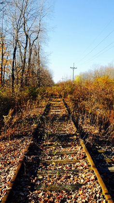 I'd like to walk on these tracks to see what else may have been abandoned because of their no longer being used.