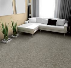 Carpet / Tapis_Nyluxe  Perfect-Home_T2420-(02420)