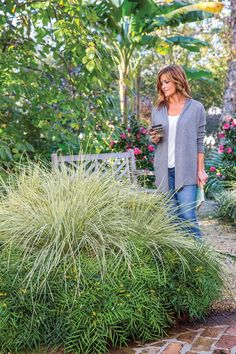 301 best plants for north central florida images trees shrubs rh pinterest com
