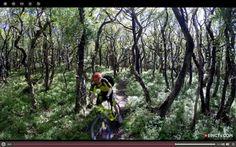 Trail Ninja Video: Never Mind The Quantocks – Chris Smith And Dan Milner Ride Southwest England | Singletracks Mountain Bike News