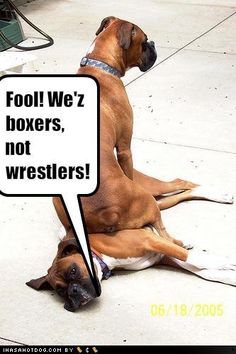 Billie does this to other dogs! Too Funny!!