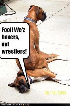 Too funny! ;o)