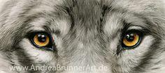 Wolf Eyes by Drehli on DeviantArt