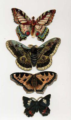 Antique Victorian Scrap Die Cut Butterflies by VintageVendor