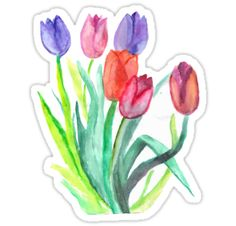 Watercolor Tulips • Also buy this artwork on stickers, phone cases, home decor, and more.