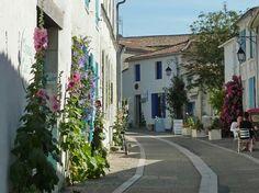 Mornac-sur-seudre,  Charente Maritime,  France.