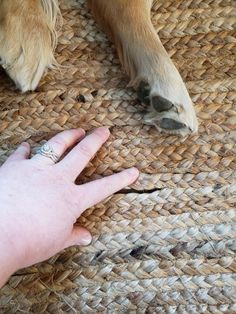 nuLOOM Hand-Woven Rigo Jute Area Rug or Runner - Walmart.com - Walmart.com Porch Ceiling Lights, Fabric Rug, Shades Of White, Jute Rug, Home Decor Styles, Simple Way, Walmart, Hand Weaving, Area Rugs