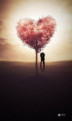Liefde is een essentieel thema in dit boek. We nemen zowel de mooie als de minder mooi facetten waar die de liefde met zich meedraagt.