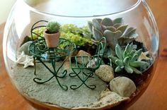 Truques de Meninas : Jardim dentro do vidro #decoracao