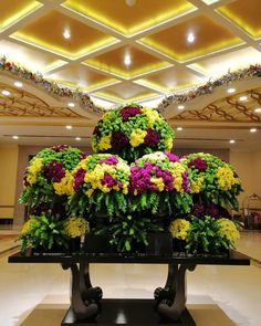 Resorts World Manila, Philippines, Floral, Plants, Flowers, Plant, Flower, Planets