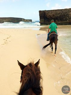 Horseback riding on the beach in Aruba - Taste and Tell