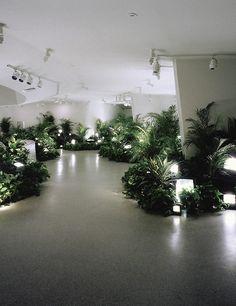 nam june paik, tv gardeninstallation at solomon r. guggenheim...