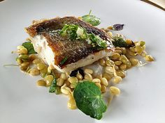 Pacific cod and sprouted lentils from Corazon de Tierra Restaurant in Baja California Wine Country